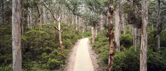 Learn more about Margaret River